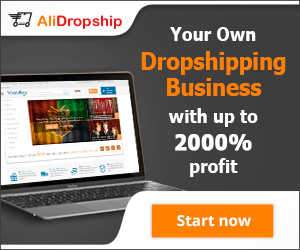 alidropship business